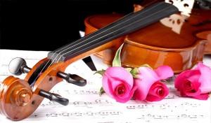 Đàn Violin cao cấp của thương hiệu nào tốt nhất