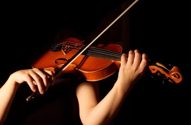 Cấu tạo của cây đàn Violin